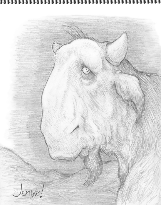 """Billy, Der Vunder Bison; - Pencil Drawing - Copyright 2019, Jephyr (Jeff Curtis), All Rights Reserved"